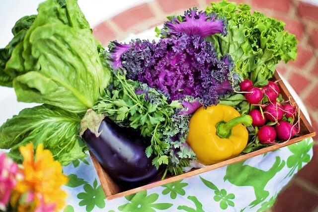 Vitalstoffe im heimischen Gemüse