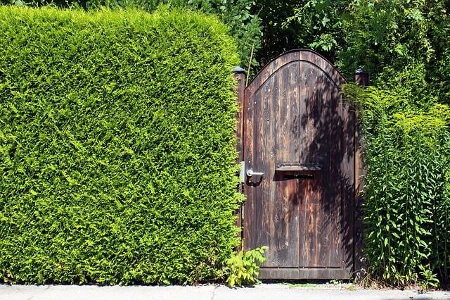 Sichtbarrieren für mehr Privatsphäre im Garten