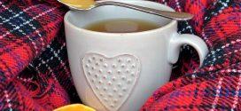 Hausmittel für Erkältungen