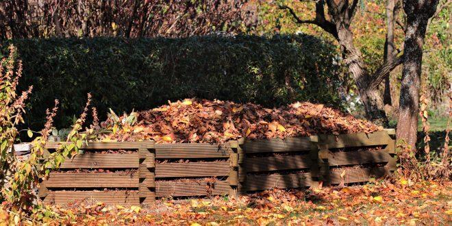 Die Vorteile eines eigenen Komposts im Garten