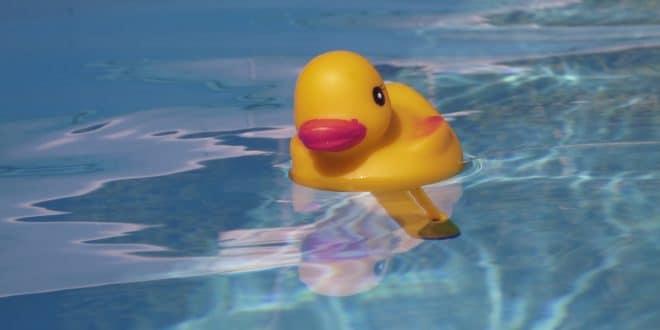 Die Reinigung des eigenen Pools