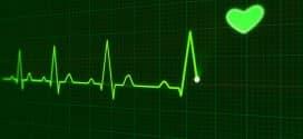 Unser Herz – der Motor unseres Lebens