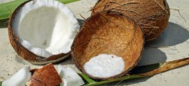 Kokosprodukte sind gesund, aber keine Wundermittel