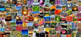 Mit dekorativen Bildern und Fotos die Wohnung gestalten