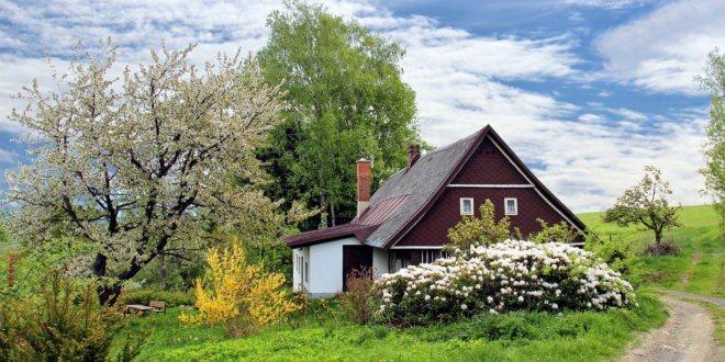 Sichtschutz im Garten: individuelle Lösungen garantieren Wohlfühlatmosphäre