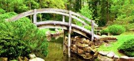 Inspirationen für die Umgestaltung oder den Umbau des Gartens